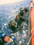 Scuba Diving with Fuerte Divers